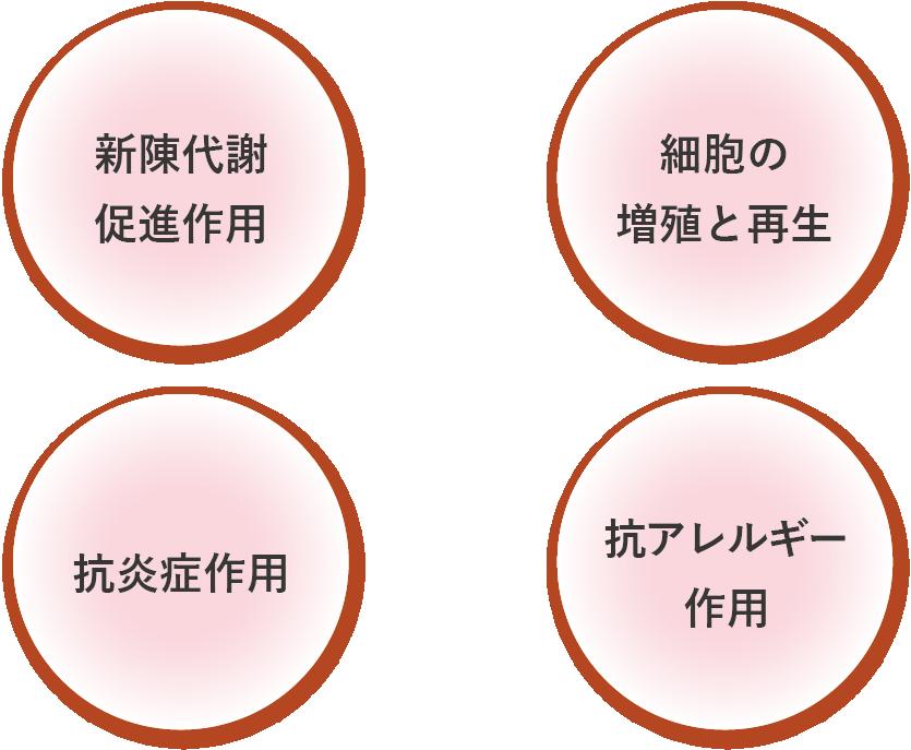 ヒトプラセンタ作用2