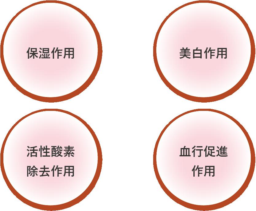 ヒトプラセンタ作用1