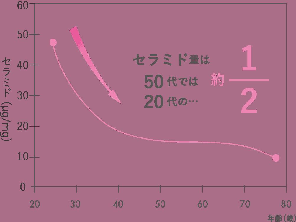 セラミドのグラフ